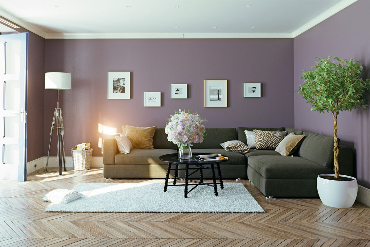 Nice Home Colour Trends 2018